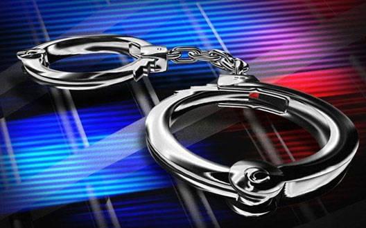 जुड़वा बच्ची के हत्या मामले में मां गिरफ्तार