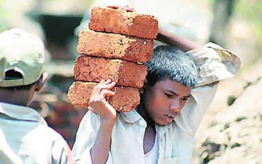 Villagers will get employment through MNREGA
