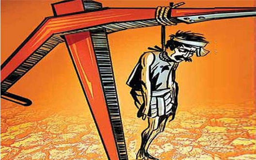 24 episodes of farmer suicides eligible for help