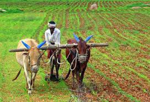 Beginning of Navtapa, pre-sowing preparations for farming