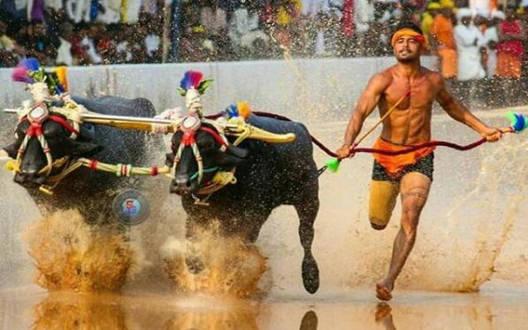 श्रीनिवास गौड़ा से भी तेज निकले निशांत शेट्टी, कंबाला रेस में तोड़ा 100 मीटर का रिकॉर्ड