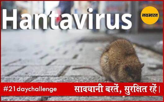 हंता वायरस क्या है? जाने इस बीमारी के लक्षण
