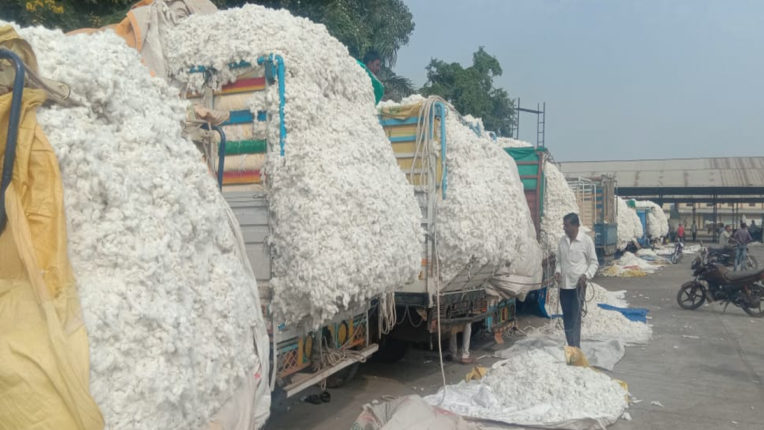 Purchased the record of cotton in the district, the cabinet greeted