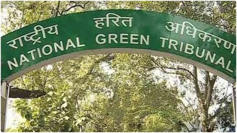 Impose sewage charges on all houses in Delhi: Green Tribunal