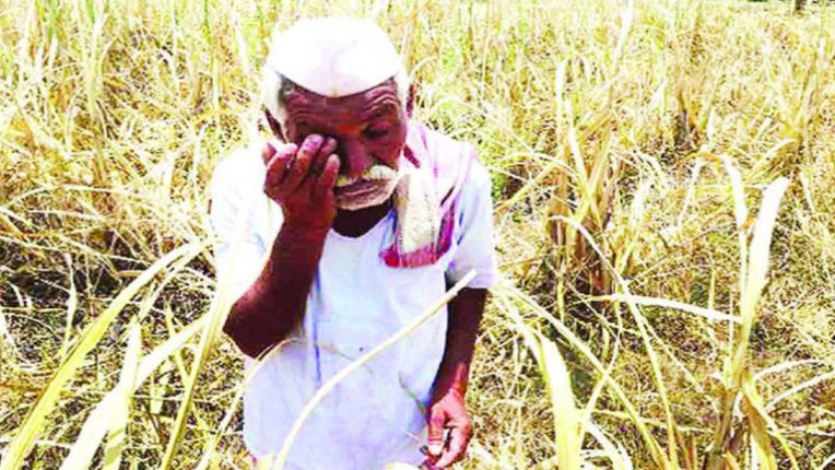 Complaint against DFO at Ramnagar police station, farmers upset with behavior