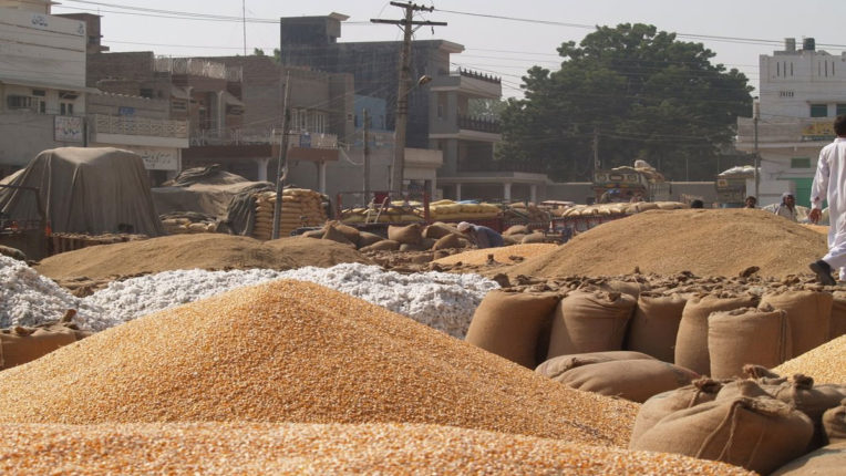 Market Committee to be the center of farmers' development - Legislative Jorgewar rendering
