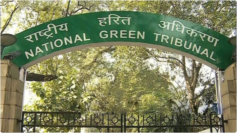 New industries should not be allowed until waste disposal facilities are ensured: NGT