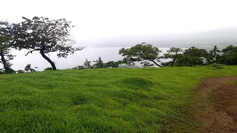 जलाशय के क्षेत्र में बारिश जारी, 86.82 मीटर हुआ मोरबे का जलस्तर