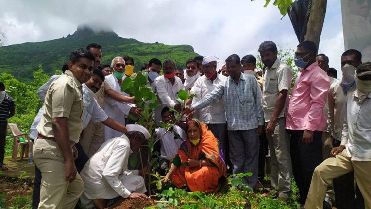 विधायक गावित ने लगाए 1000 वृक्ष