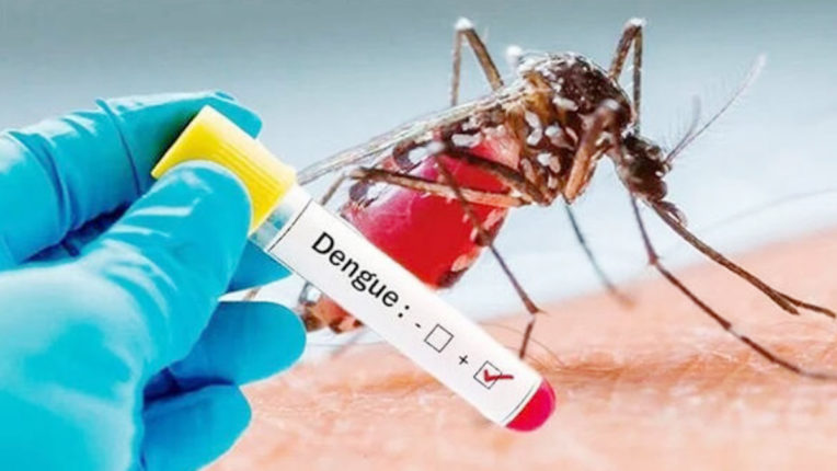सावधान! कोरोना साथ ही डेंग्यु रोग भी फैला रहा पांव