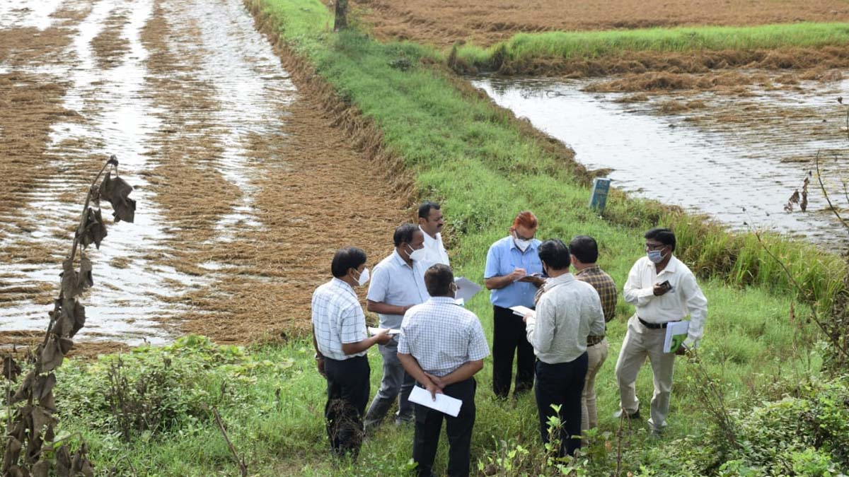 Central Team, Flood Affected Farm