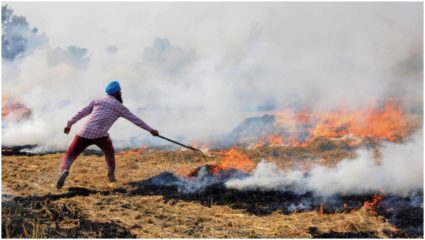 Petition filed in Delhi, Haryana to stop burning stubble in covid-19 problem
