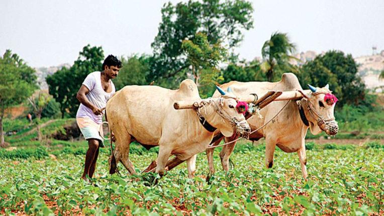 किसानों को सभी योजनाओं का लाभ मिलना जरूरी