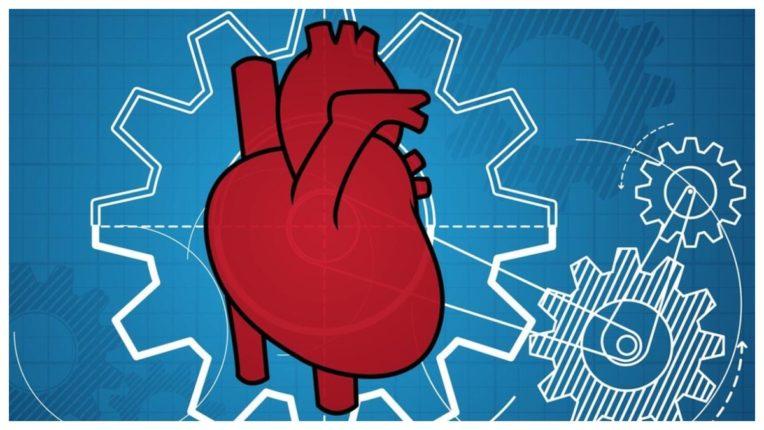 ये हो सकते हैं दिल की बीमारी के लक्षण, ना करें नज़रअंदाज़