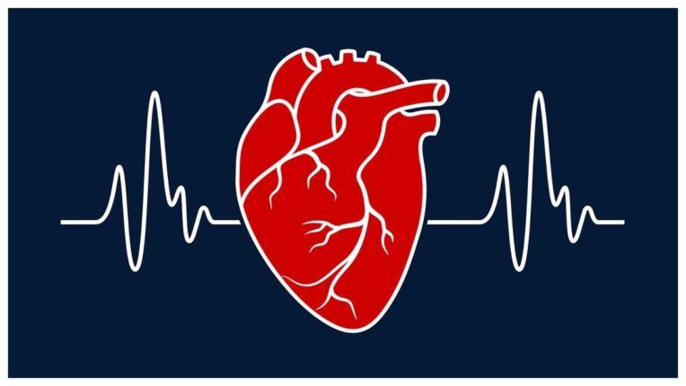 हृदय के बिना जीवन असंभव, जानें इसकी संचरना