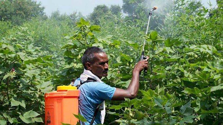 कीटक नाशक प्रबंधन विधेयक भारतीय किसानों के लिए नुकसानदेह