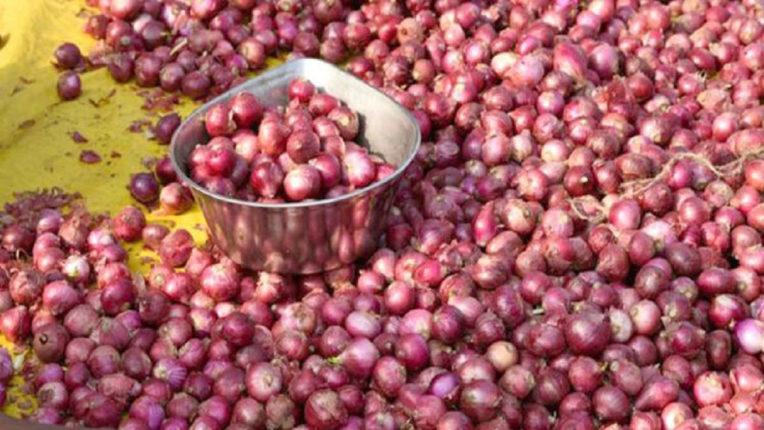 सरकार के दखल के बाद 10 रुपये किलो तक कम हुए प्याज के थोक भाव