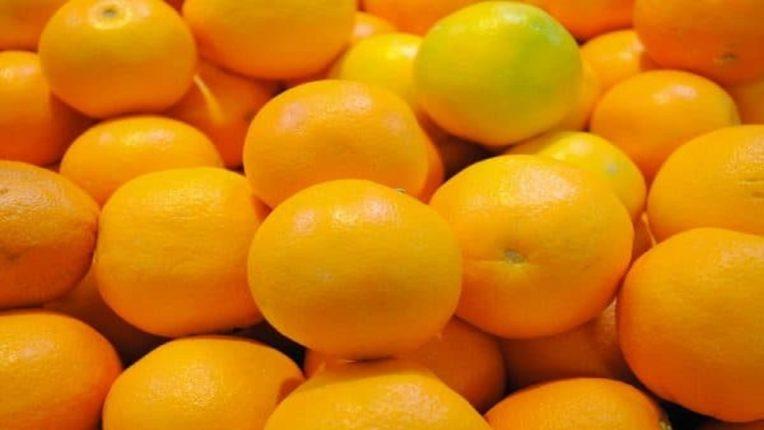 वरुड-मोर्शी का संतरा जाएंगा बांगलादेश