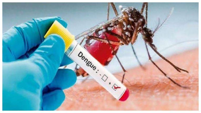 यह हो सकते हैं डेंगू के 5 लक्षण, ज़रूर लें डॉक्टर की सलाह
