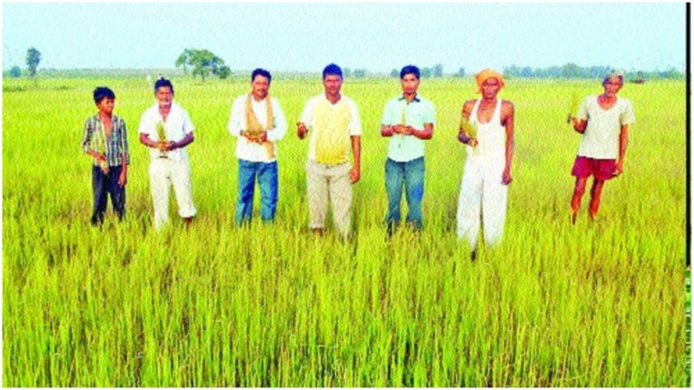 Banking loan waiver scheme Hundreds of farmers are deprived of benefits