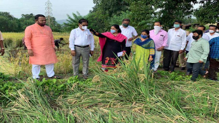 अतिवृष्टि से प्रभावित खेतों का सांसद बारणे ने किया दौरा