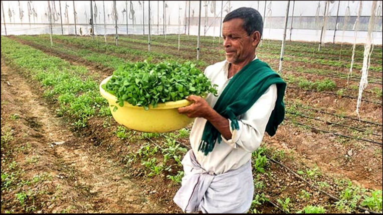 किसानों की मेहनत को उचित सम्मान