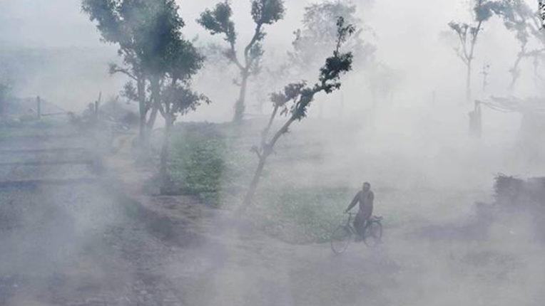 Fog Winter