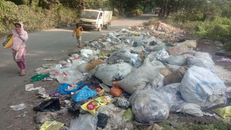 डंपिंग ग्राउंड में तब्दील हुईंं सड़कें, वसई-विरार में जगह-जगह कचरे का अंबार