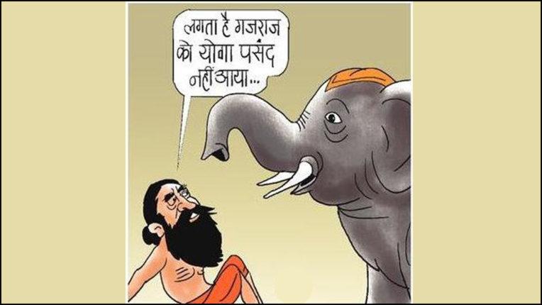 हाथी की पीठ पर योगासन-प्राणायाम बाबा गिरे धड़ाम
