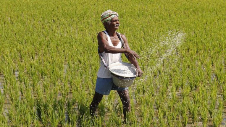 दोहरी मार झेल रहा जिले का किसान