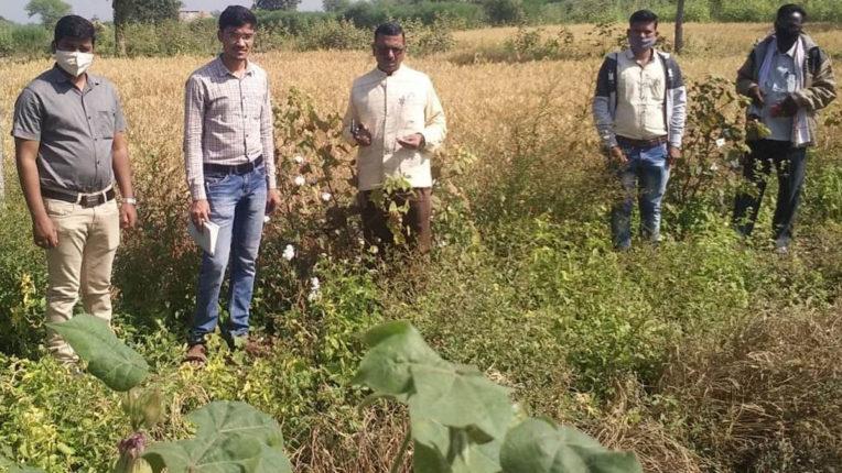 Farmers should emphasize on organic farming