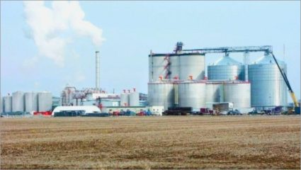 Government demand for ethanol increased production in sugar mills