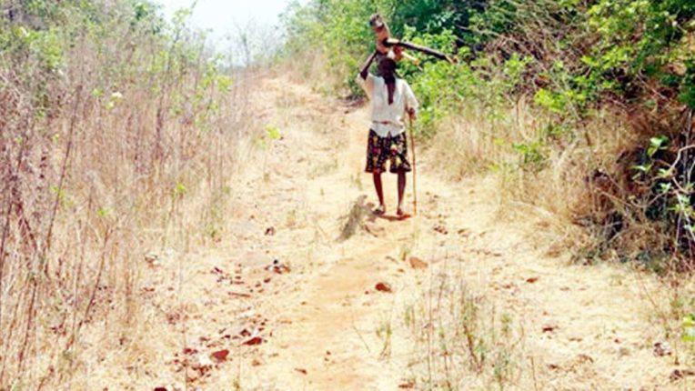 दुर्गम क्षेत्रों में पक्की सड़कों की प्रतिक्षा, अनेक गांवों में पगड़ंड़ी का सहारा