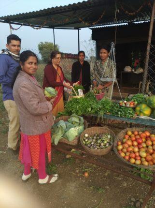 Woman Farmer, Wardha
