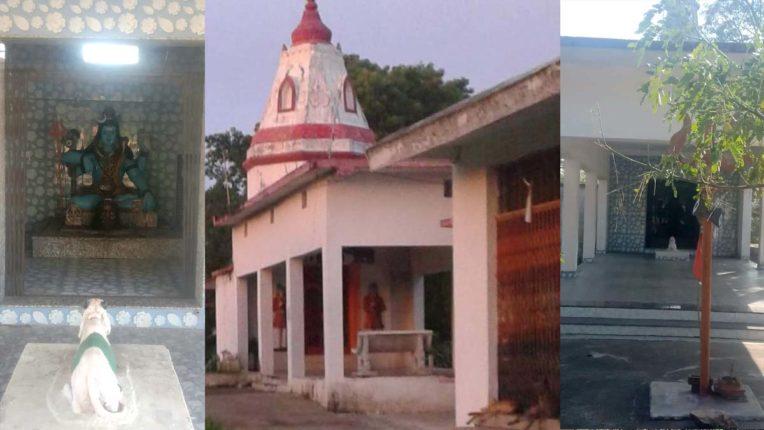 Gondia Temple, Makar Sankranti