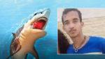 शार्क ने समुद्र में तैरने गए युवक पर किया हमला, काटकर ले गई 'प्राइवेट पार्ट'